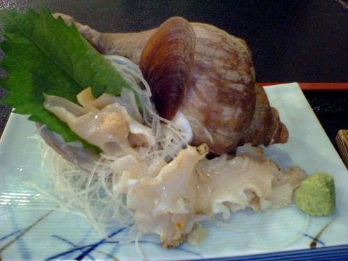 ツブ貝のお造り