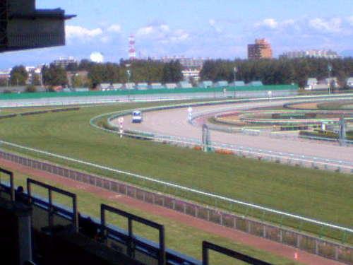 札幌競馬場メインスタンドより~ゴール板付近