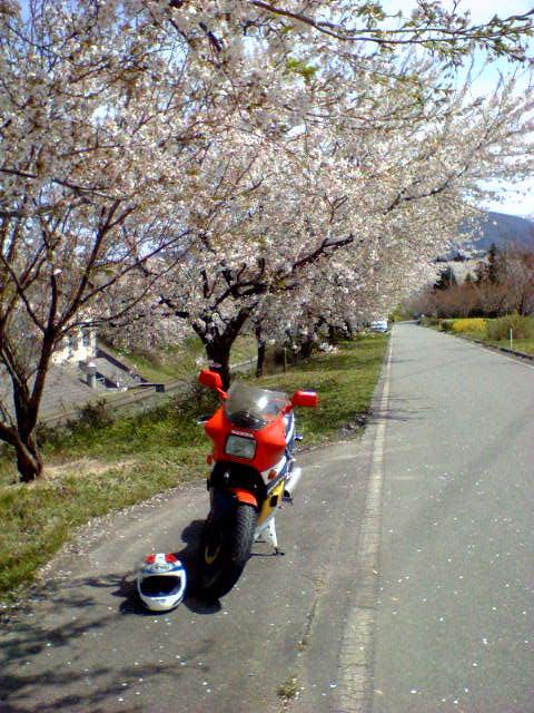 花よりNS400R